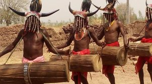 Bison horn muria tribe
