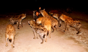 Hyena Man of Harar